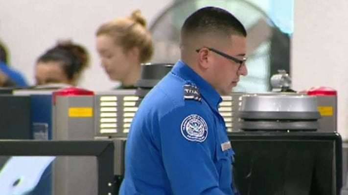 TSA deploying hundreds of officials to southern border to combat immigration crisis